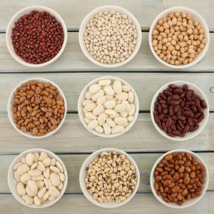An overhead view of nine different varieties of beans in small white shallow dishes on a distressed finish wooden table. All these beans are used as an ingredient in a wide range of culinary dishes with some also a popular addition in fresh salads. They are all high in fiber and a valuable source of protein.